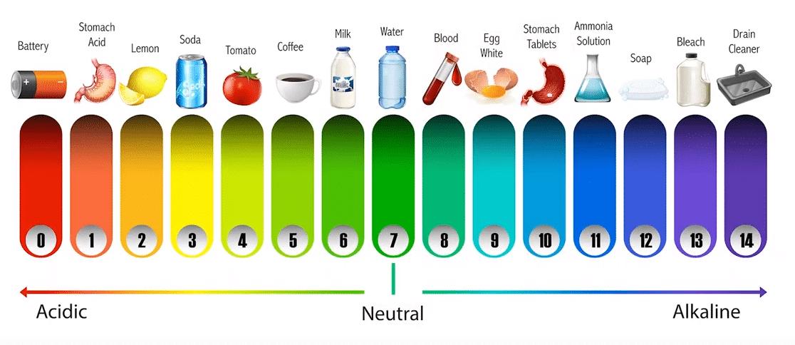 El agua pura es la sustancia neutra de referencia, con un pH de 7.