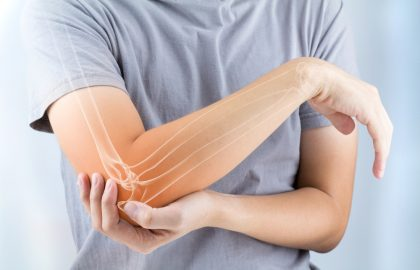 Los huesos protegen a los órganos y, junto con los músculos, dan movimiento al cuerpo.