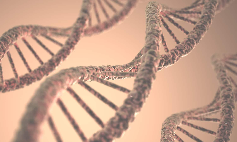 Tests genéticos